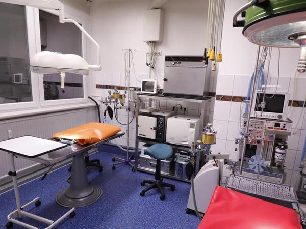 Ganz ruhig bleibt es in dieser Nacht im Operationssaal: Es kommen keine Notfälle zur Behandlung in die Tierklinik – zum Glück.