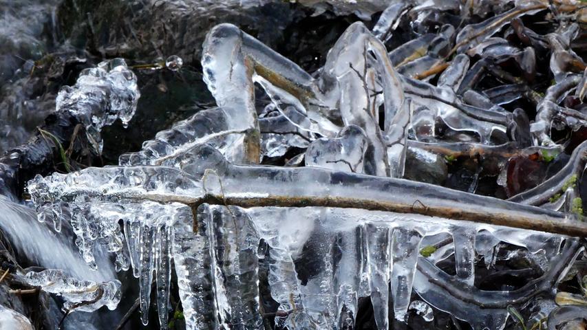 Eine interessante Eisskulptur hat sich an Zweigen und Gräsern gebildet.