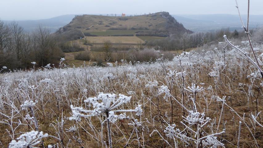 Ein Hauch von Winter auf dem Rodenstein. Auch wenn es nur Frost ist.