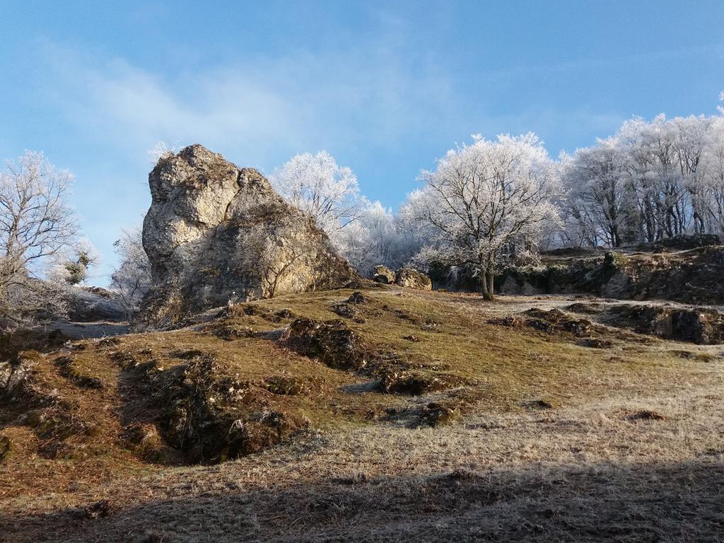 Ein Winterhauch am Walberla.