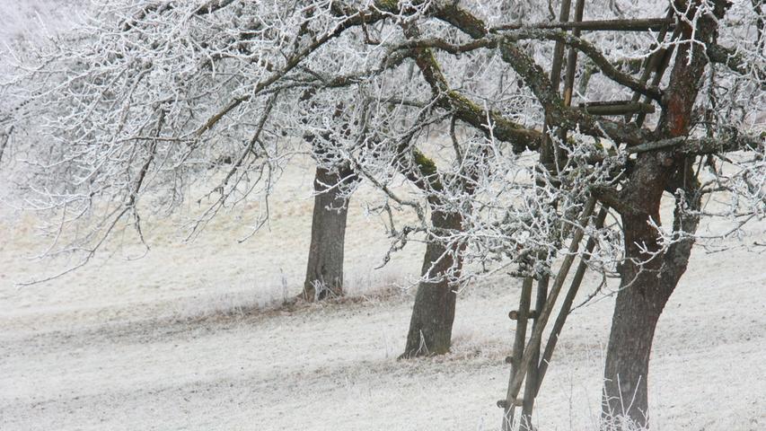 Winterliche Impression vom Hetzleser Berg.