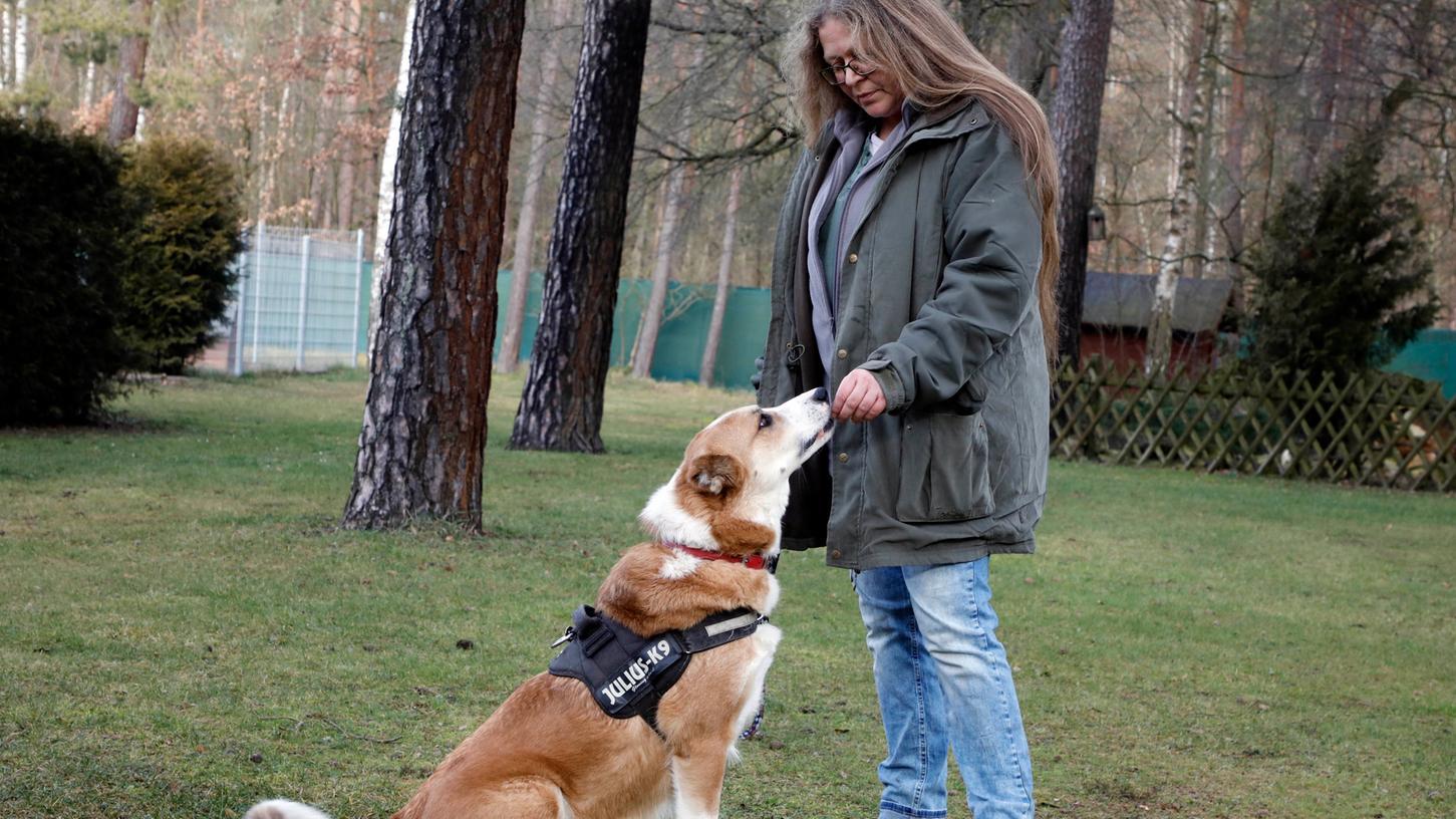 Mitarbeiterin Birgit Baier kümmert sich um Mischling Noah, der seit fast drei Jahren  im Tierheim an der Stadenstraße lebt. Er ist dort einer von derzeit vier Problemhunden.