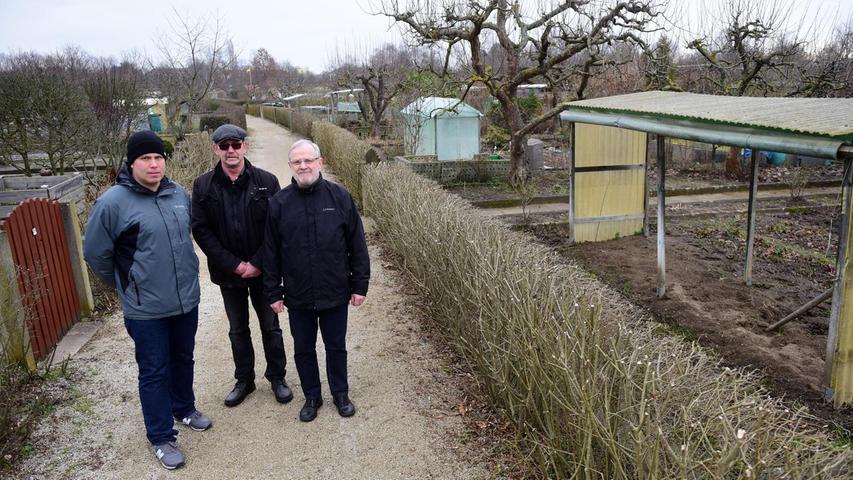 Geliebte Schrebergärten: Fürth feiert großes Jubiläum