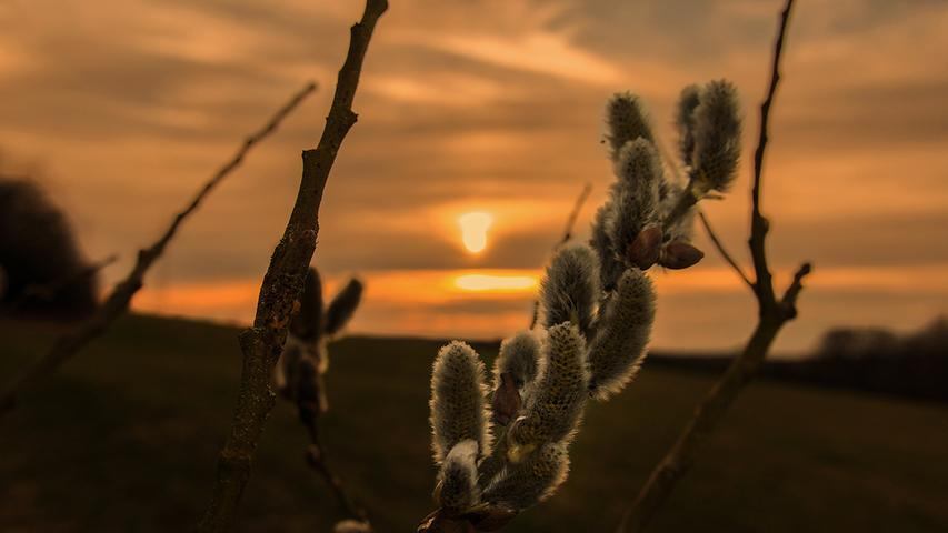 Einen stimmungsvollen Sonnenuntergang, fotografiert bei Kunreuth, hat Winfried Lösel da eingefangen.