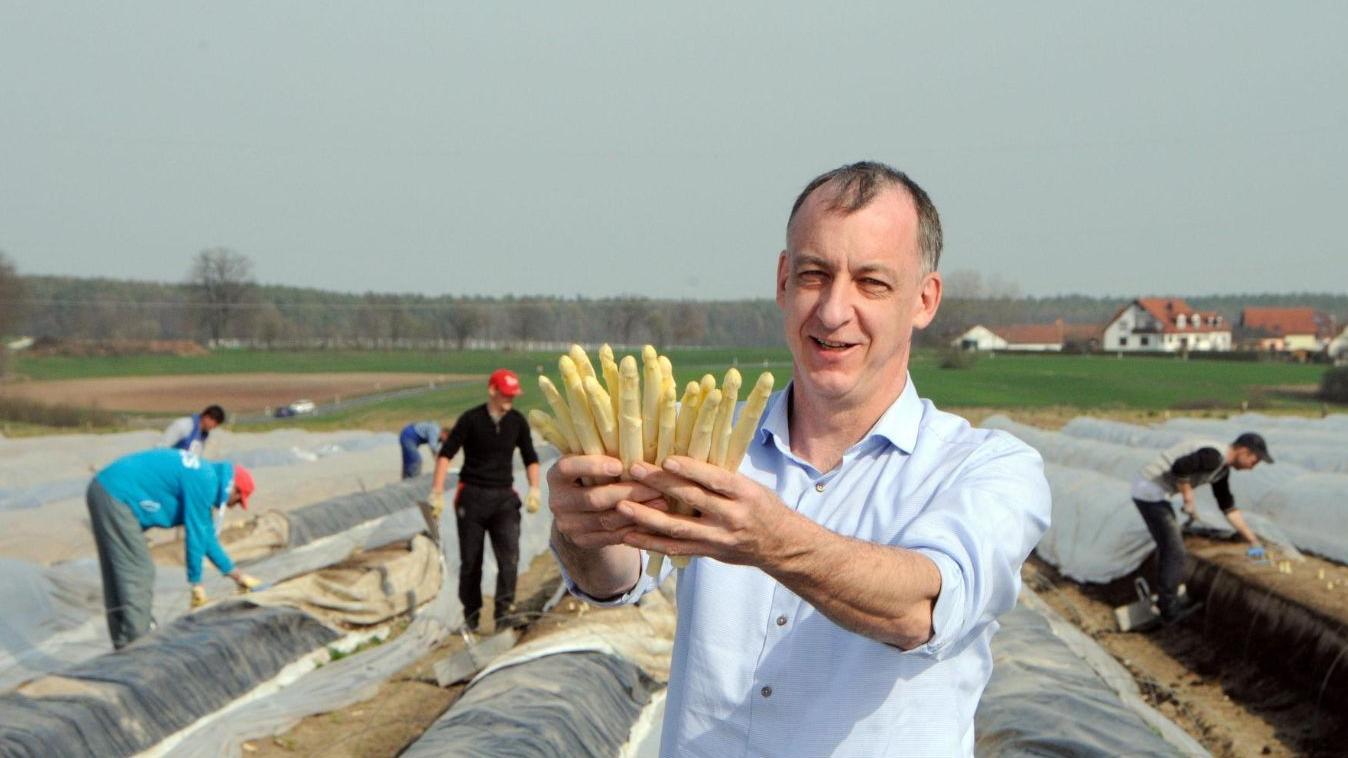 Spargelbauer Konrad Kreß bei der Ernte 2019, im Hintergrund Saisonarbeitskräfte: Vor einem Jahr war die Corona-Krise noch weit weg.
