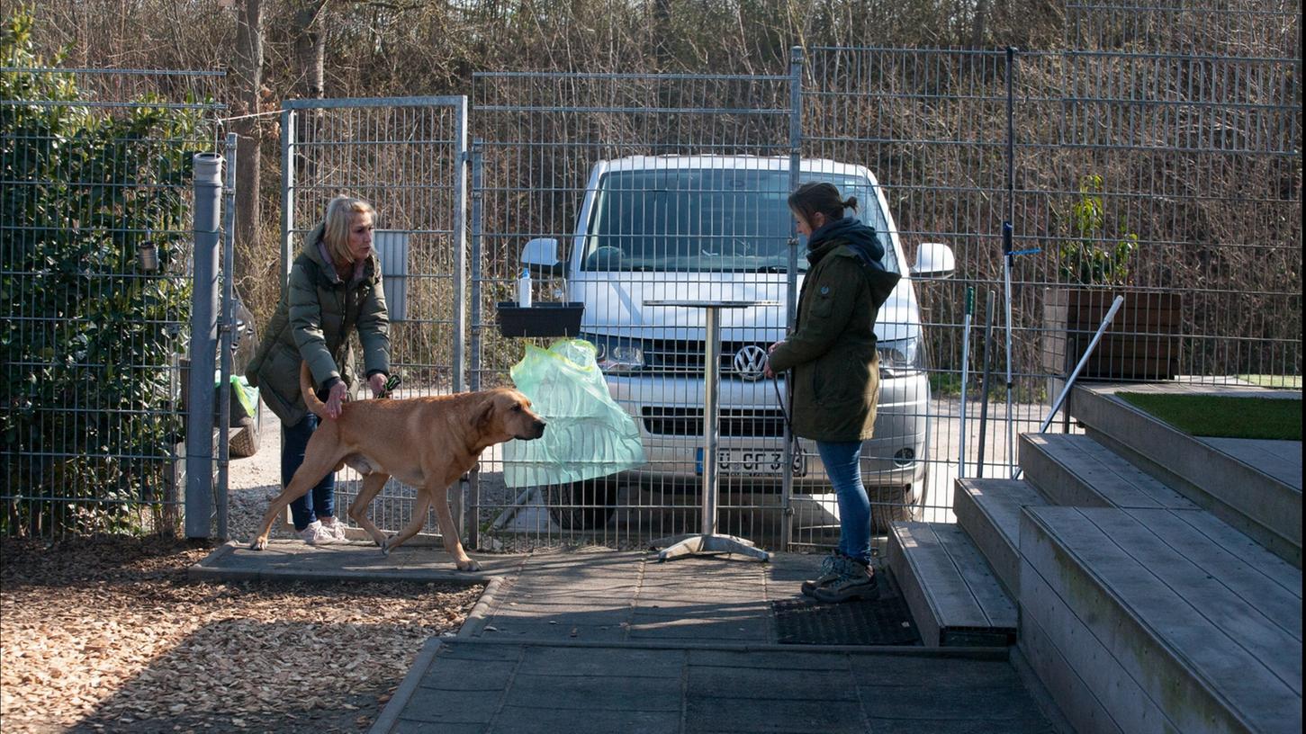 Ab in die Tagesbetreuung: Die Situation wurde von den Mitarbeiterinnen des Hundezentrums, Silvia Kadic (links) und Nicole Reinhold, nachgestellt. Dem Broholmer namens Brego wird an der Tür vom Halter sein Halsband abgenommen, er kommt auf das Hundeschulgelände und wird dort in Empfang genommen.