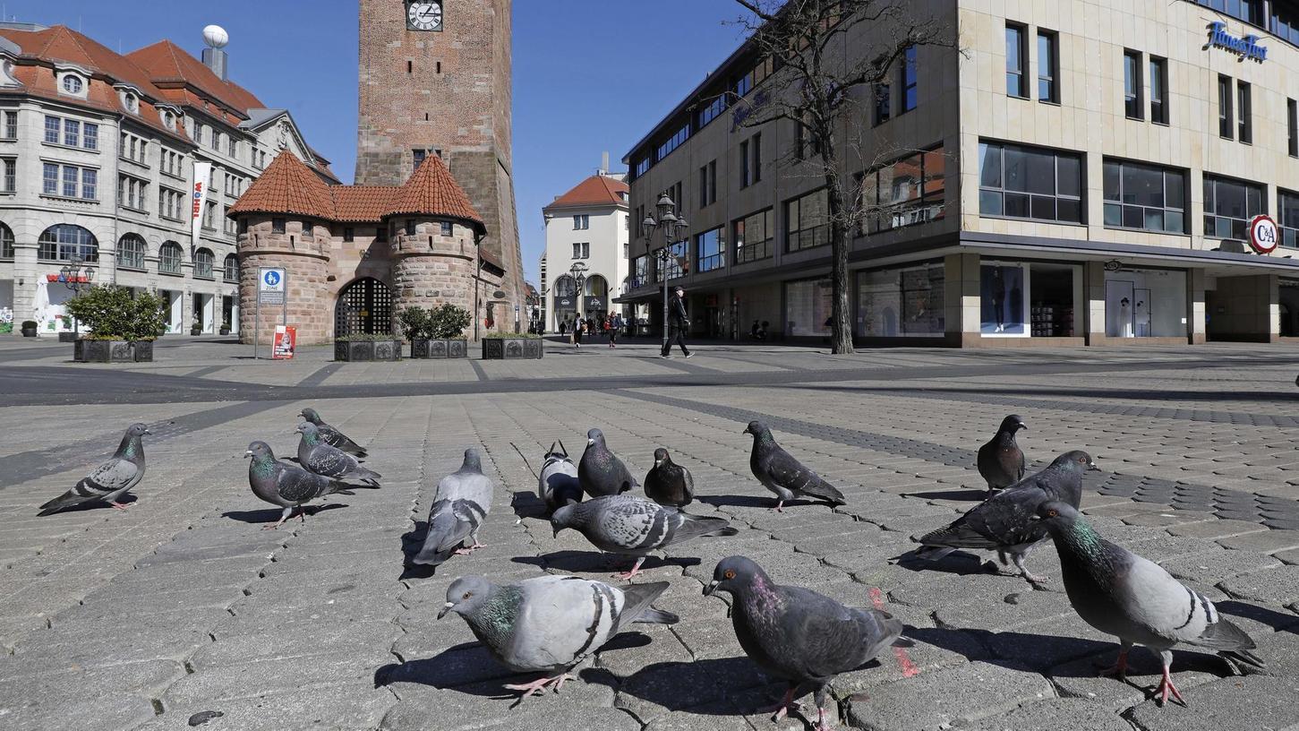 Auf Futtersuche am Weißen Turm: Auch wenn sie ungesund und nicht artgerecht sind – Essensreste finden die Tauben jetzt kaum noch.