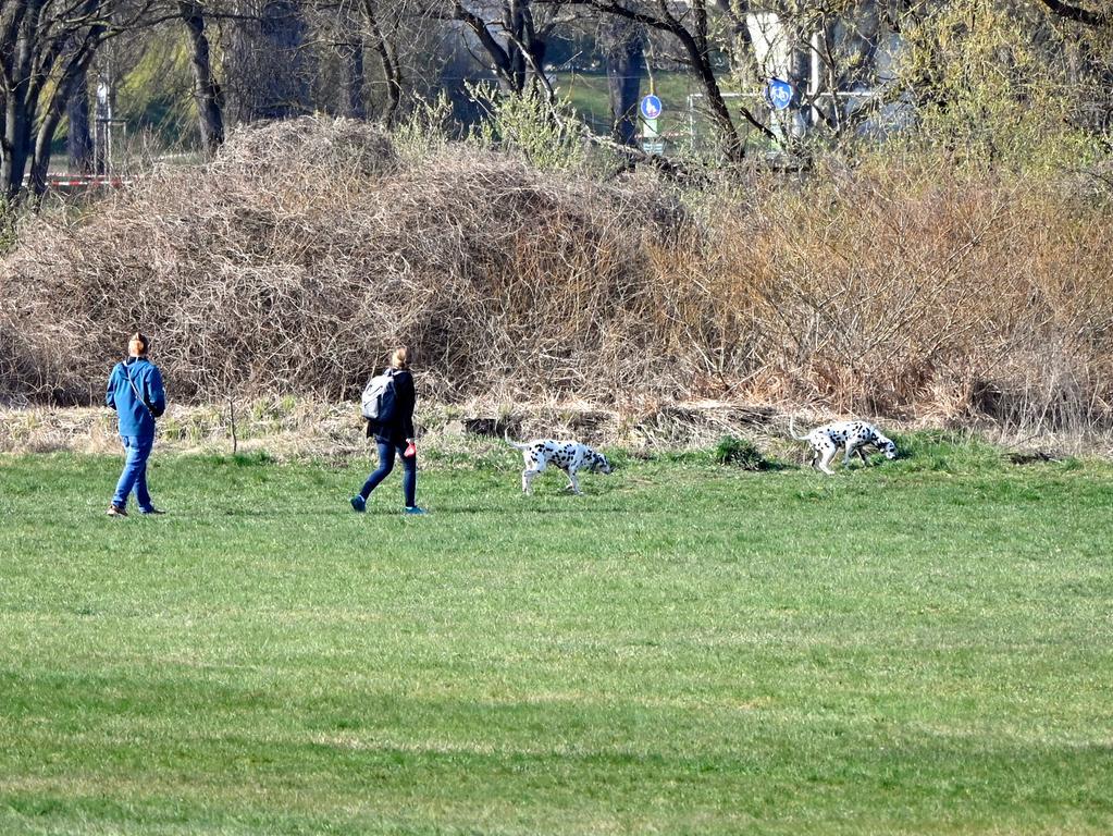 Corona-Shutdown, Tag 11: Gassigehen im Grünen: Hundehalter, Jogger, Radler, Spaziergänger und Sportler halten sich an die Auflagen und den nötigen Sicherheitsabstand.