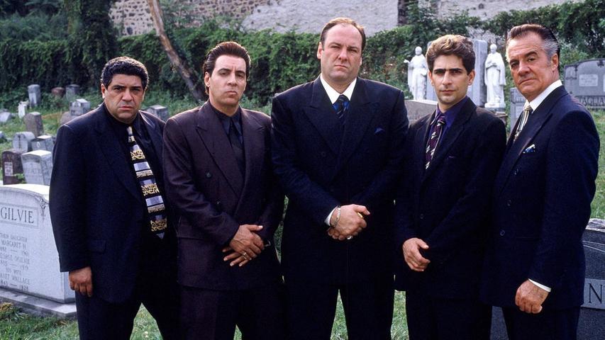 Der Italo-Amerikaner Tony Soprano (James Gandolfini) hat mit seinen beiden Familien alle Hände voll zu tun. Mit seiner Highschool-Liebe Carmela (Edie Falco) führt er eine angespannte Ehe und hat es auch mit seinen beiden Kindern, Meadow (Jamie-Lynn Sigler) und dem schwierigen Nichtsnutz A.J. (Robert Iler), nicht leicht. Auf der anderen Seite ist er zudem Caporegime bei einer der mächtigsten Mafiaorganisationen in New Jersey, bei der die Geschäfte zusehends schlechter laufen. Bei seiner Psychiaterin Dr. Jennifer Melfi (Lorraine Bracco) holt er sich Hilfe und gerät dabei auch das eine oder andere Mal mit ihr in eine Meinungsverschiedenheit.