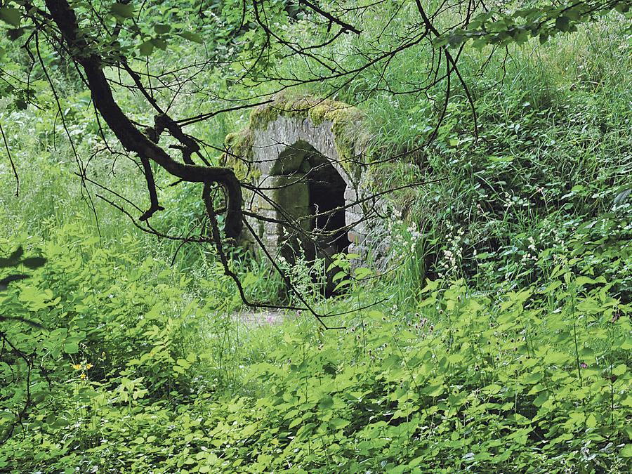Gefallen fanden die Fachleute auch in Göhren an dem idyllisch eingewachsenen Steinbrunnen.