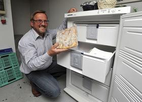 Man muss schon ein bisschen planen: Wenn Wolfram Schaa Tiefgekühltes aus dem Gefrierschrank im Keller holt — Experten zufolge übrigens der ideale Standort für das Gerät —, legt er es erst mal in den Kühlschrank.