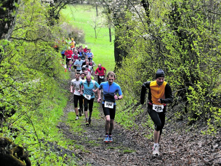 Besonders beliebt bei den Sportlern war die anspruchsvolle Strecke des Crosslaufes.