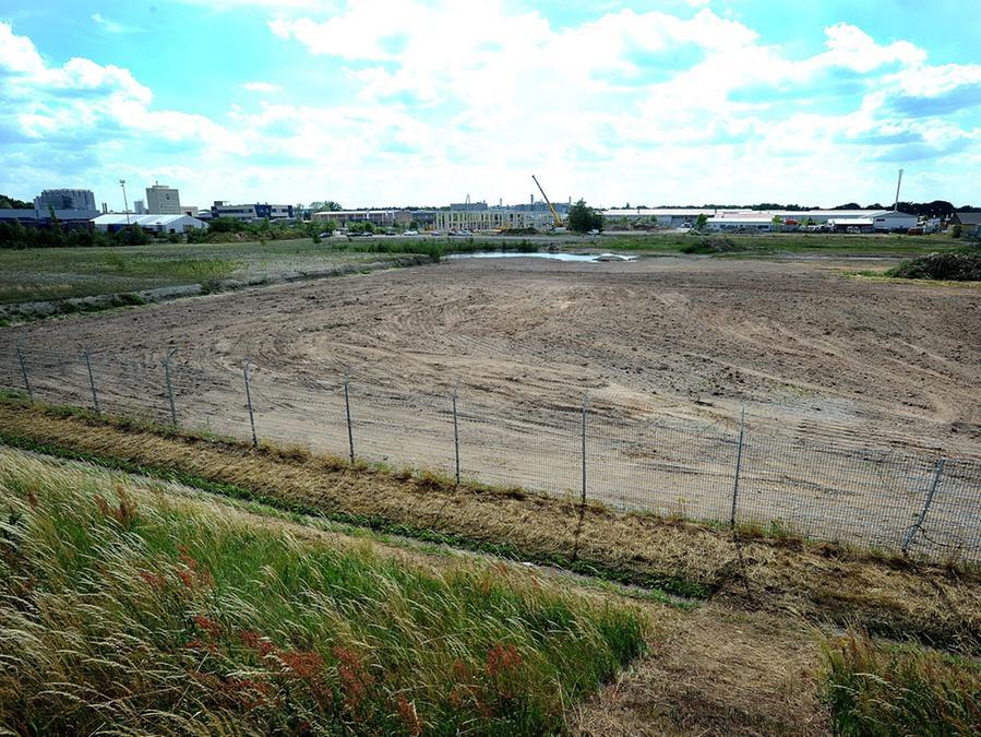 Ob Bagger einer benachbarten Baustelle den Boden geebnet haben oder welche, die das neue Stadion für die SpVgg Greuther Fürth bauen sollen, ist noch unklar.