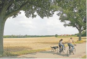 Freies Feld, so weit das Auge reicht: Hier am nördlichen Ortsrand von Oberfürberg sollen nach den Vorstellungen eines privaten Grundstücksentwicklers bis zu 800 neue Wohnungen entstehen.