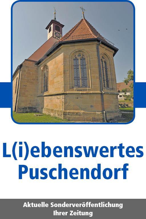 http://mediadb.nordbayern.de/werbung/anzeigen/Puschendorf2012017_.html