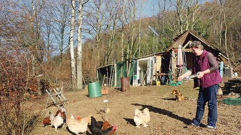 Endlich wieder in Freiheit: Nach rund vier Monaten im Stall können Michaela Stettingers Hühner, die am Wülzburghang zu Hause sind, nach Aufheben der Stallpflicht nun wieder nach Herzenslust picken und im Boden wühlen.