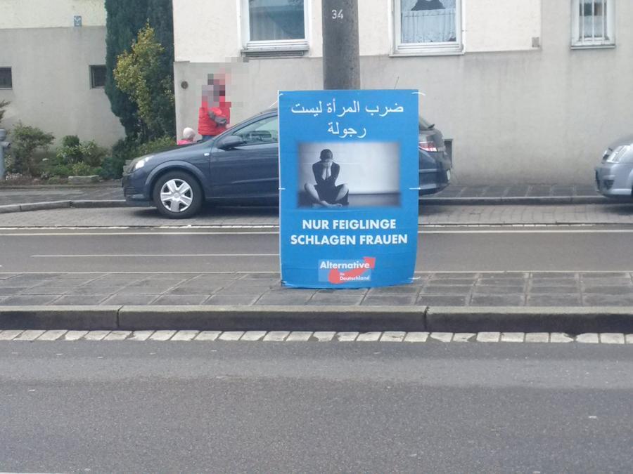 Mehrere dieser Plakate sorgen in Nürnberg aktuell für Aufsehen.