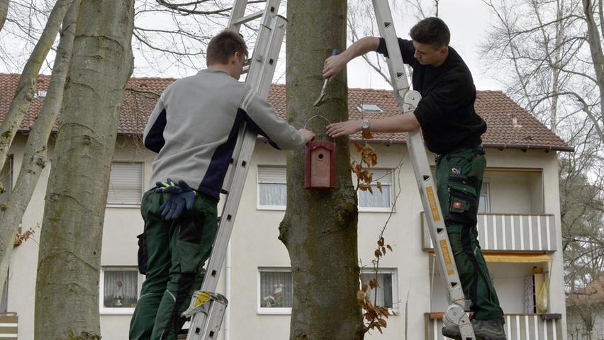 Zwei Mitarbeiter des Landschaftsbaus Ziegltrum bringen in dem GBW-Viertel Nistkästen an.