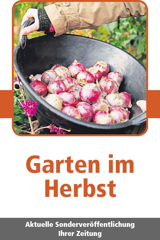 http://mediadb.nordbayern.de/werbung/anzeigen/GartenimHerbst_FN_22092017.html