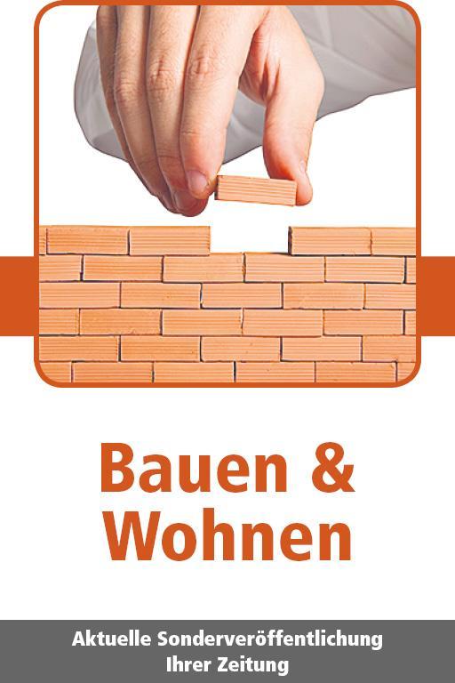 http://mediadb.nordbayern.de/pageflip/BauenWohnen20102017/index.html#/1