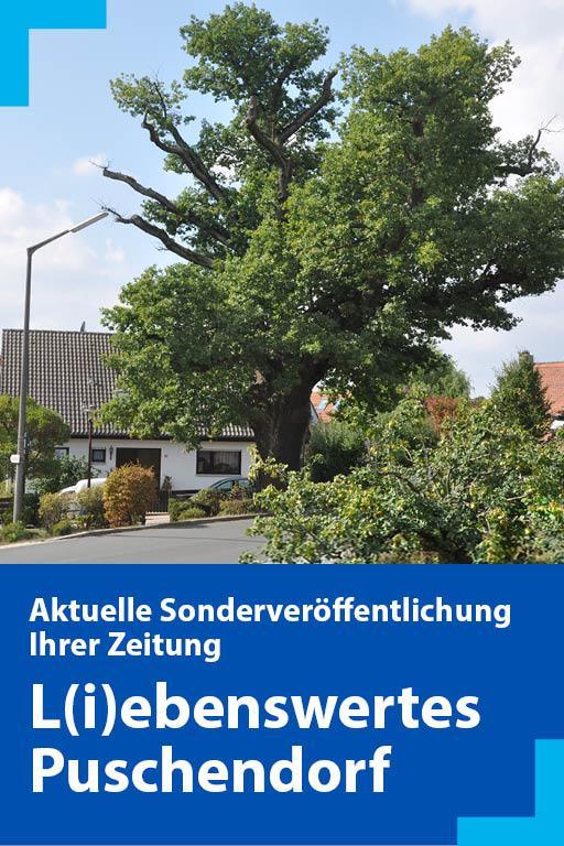 http://mediadb.nordbayern.de/werbung/anzeigen/Puschendorf2018.html