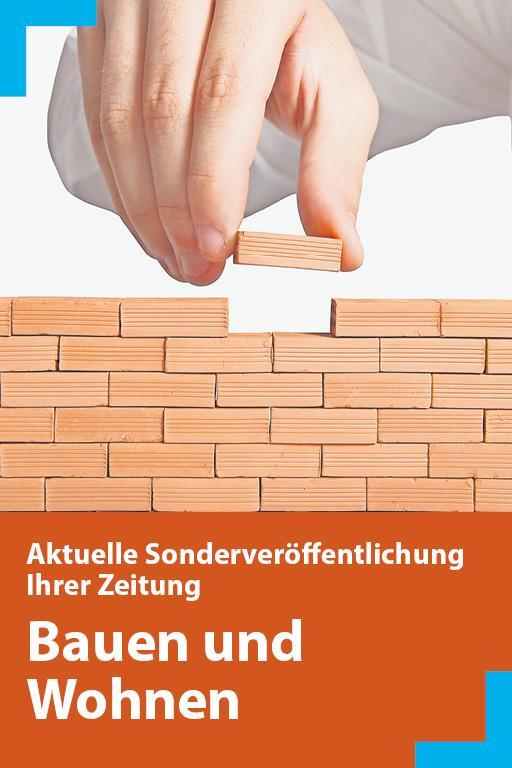 http://mediadb.nordbayern.de/pageflip/BauenWohnen_NM16022018/index.html#/1